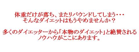 kyokugenlogo1.jpg